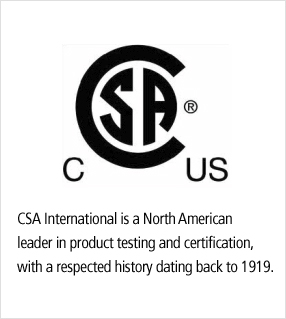 Image result for CSA